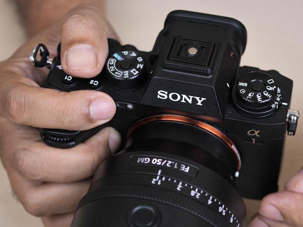 Mengulas Kamera Sultan Sony Alpha 1 dengan Sony 50mm f/1.2