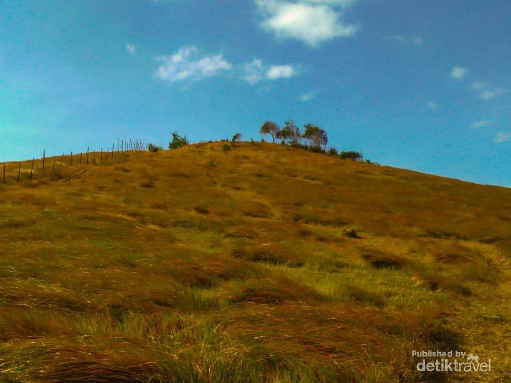 Bukit Rimpi Pelaihari, Wisata di Atas Awan