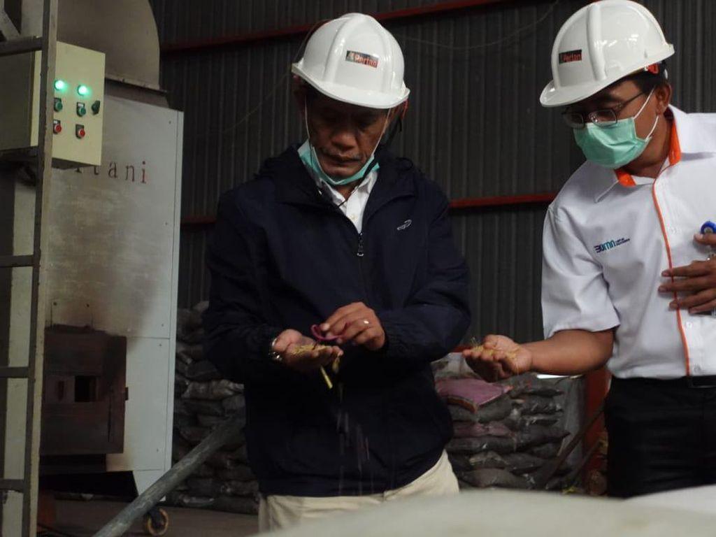 Jaga Stabilitas Harga Jual, PT Pertani Serap Gabah dari Petani Kendal