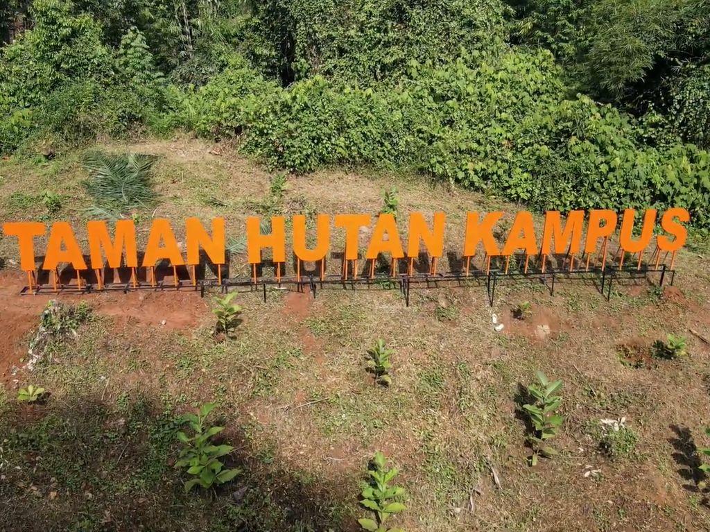 Segar! IPB Punya Taman Hutan Kampus di Dramaga
