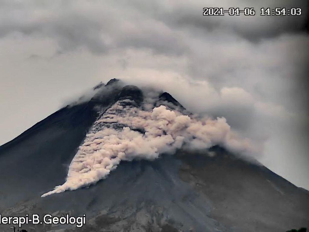 Gunung Merapi Erupsi, Luncurkan Awan Panas Sejauh 1,2 Km