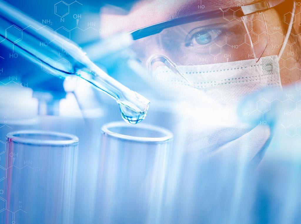 Peneliti Sukses Tumbuhkan Embrio Tikus di Gelas, Manusia Target Berikutnya
