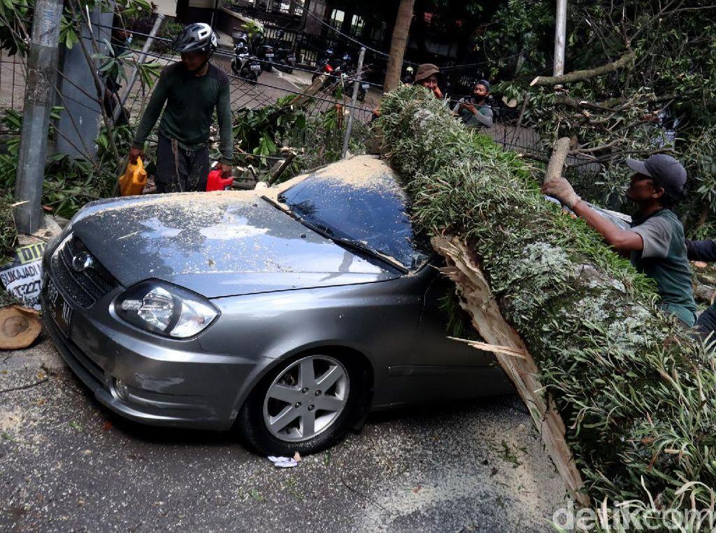2 Mobil Ringsek Tertimpa Pohon Tumbang di Bandung