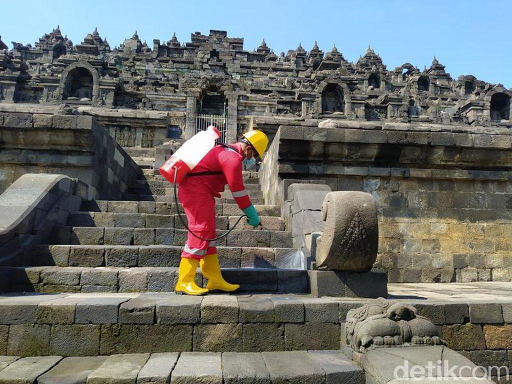 Candi Borobudur Dimandikan Minyak Atsiri untuk Hilangkan Lumut