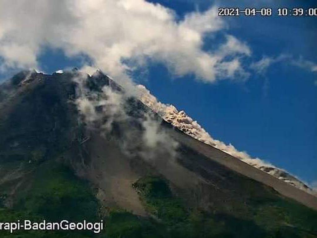 Gunung Merapi Erupsi Lagi! 2 Kali Luncurkan Awan Panas Siang Ini