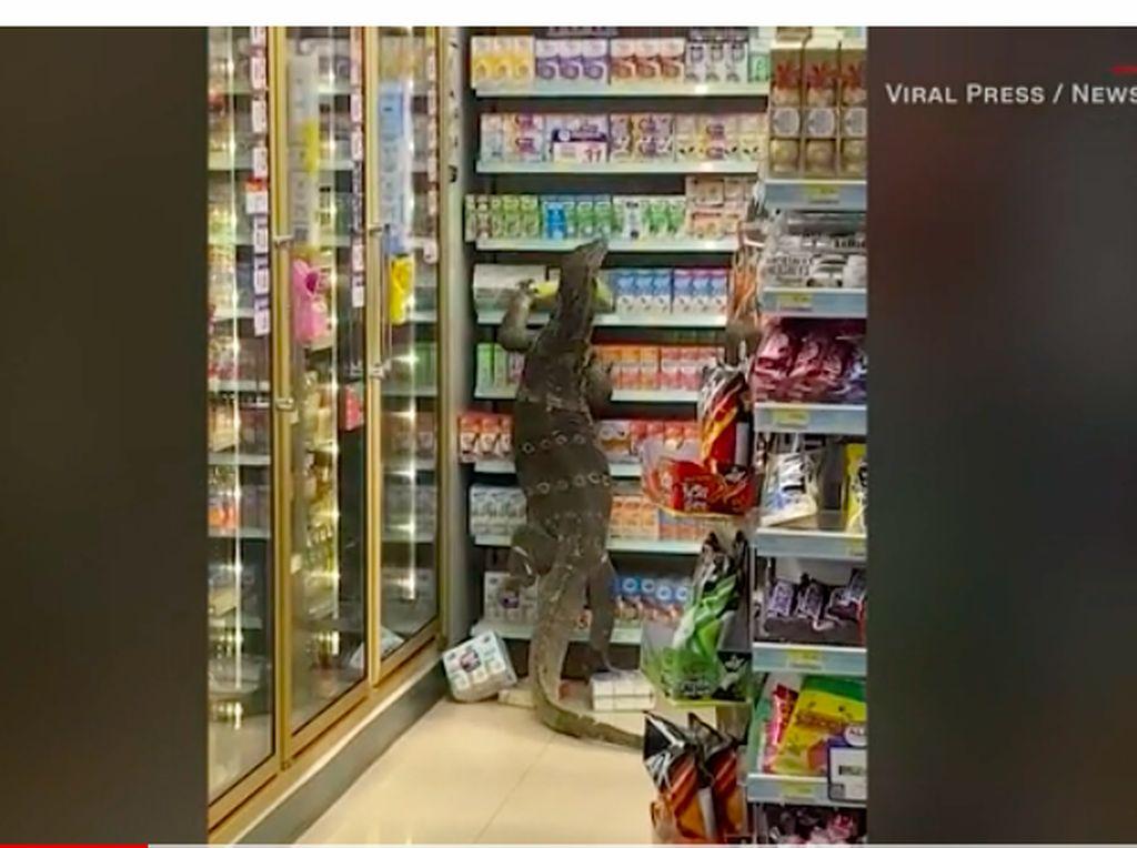 Biawak Raksasa Meneror Pembeli di 7-Eleven