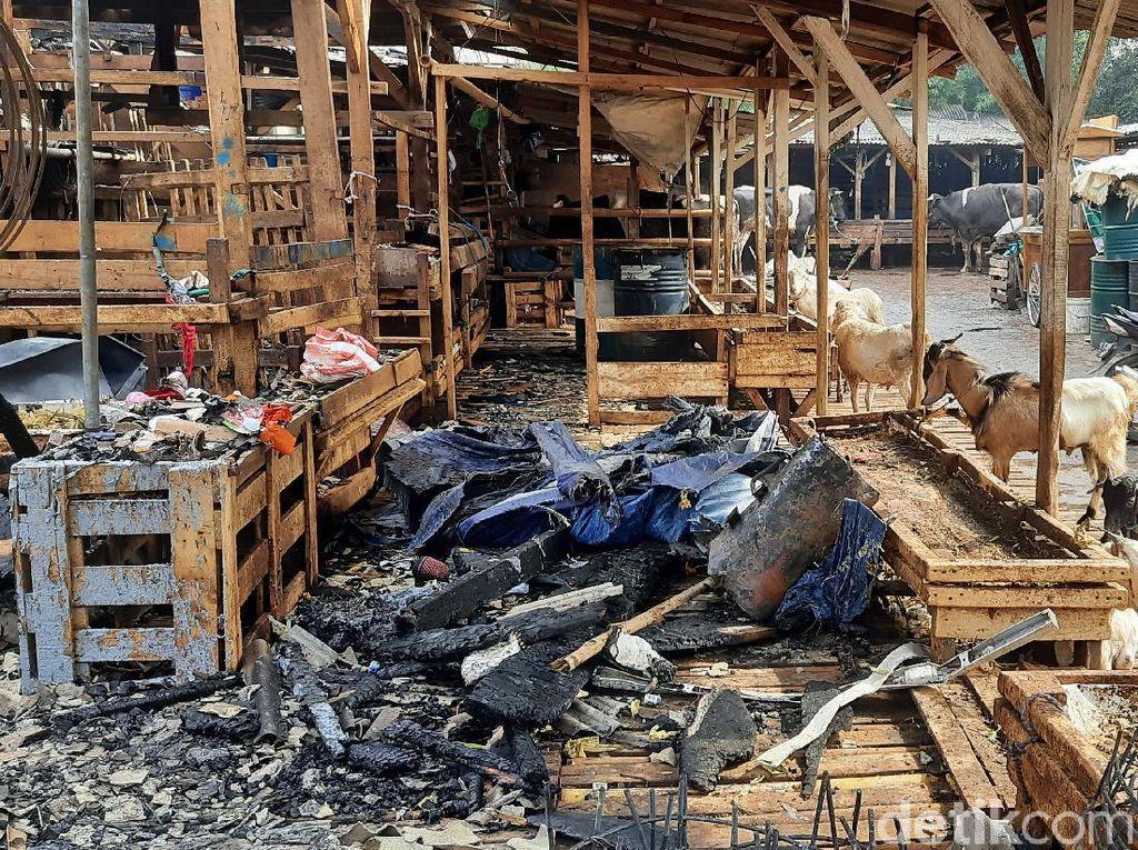 Sejumlah Pedagang Jualan Lagi Usai Kebakaran di Pasar Kambing Jakpus