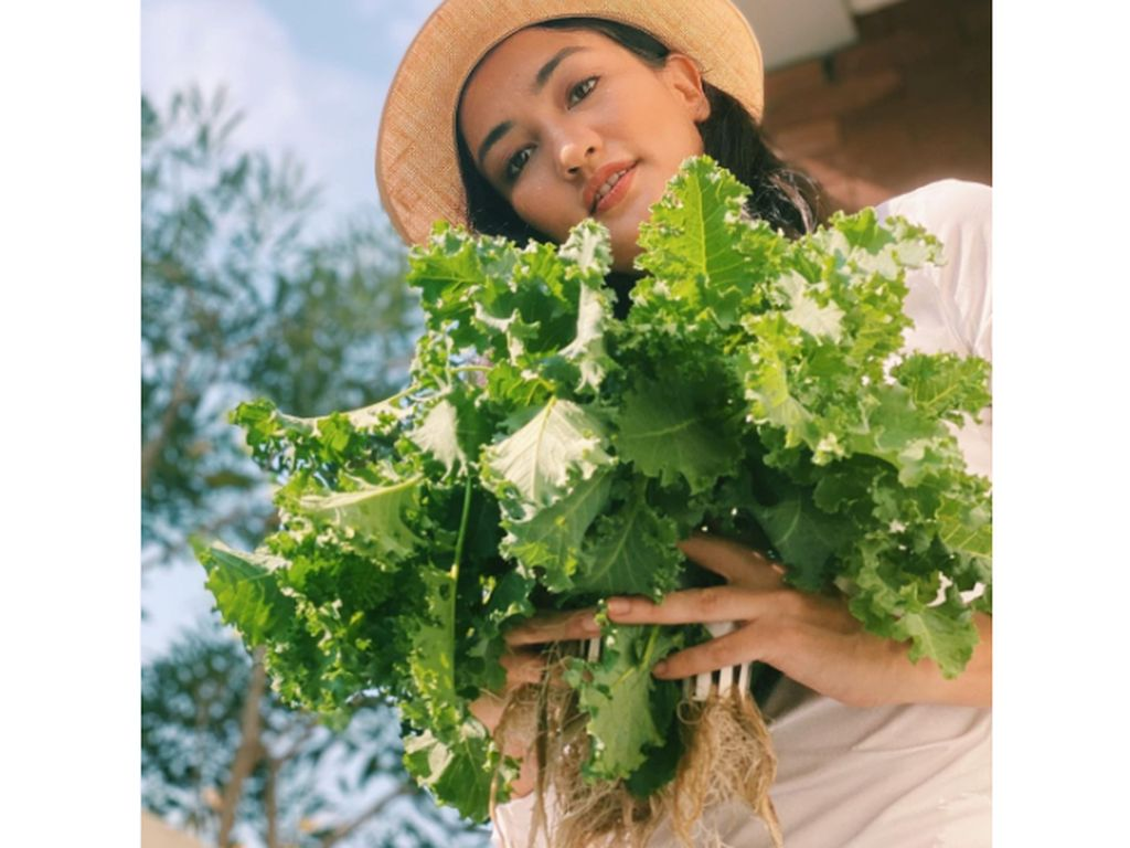Potret Atiqah Hasiholan dan Sang Putri saat Panen Sayuran di Kebun