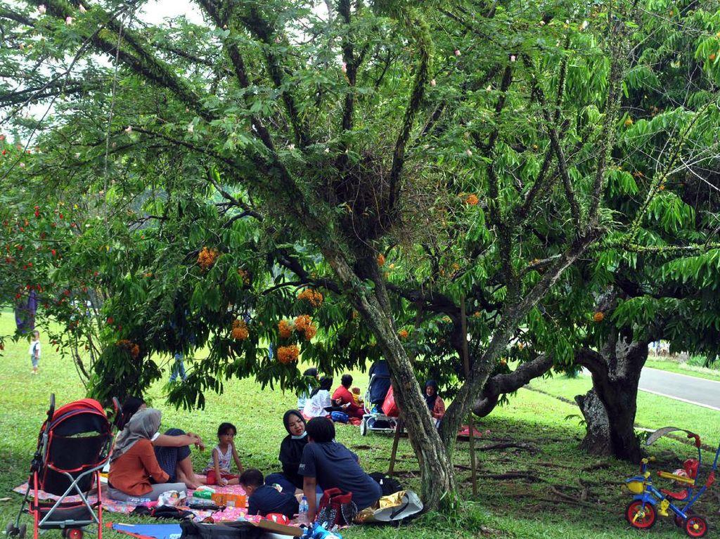 PPKM Dimulai, Kebun Raya Bogor Tutup Sampai 20 Juli