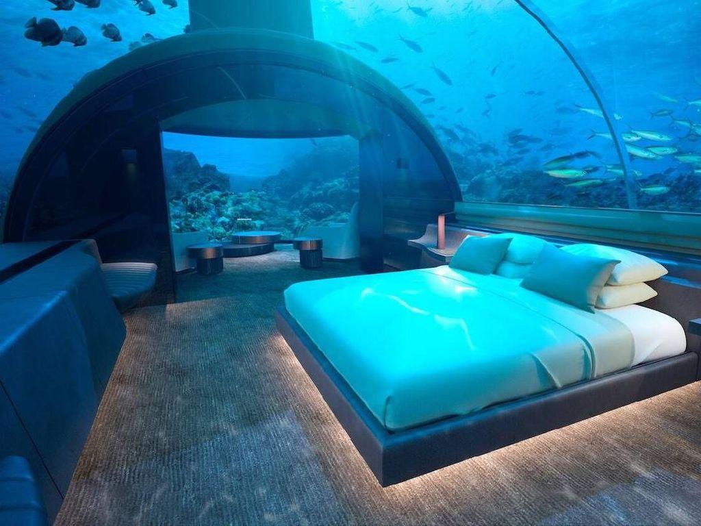 Kamu Bisa Menginap di Bawah Laut Bareng Hiu di Sini