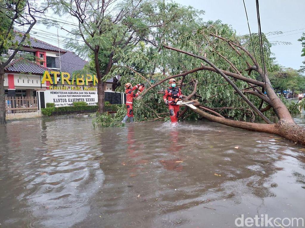 Hujan Lebat Disertai Angin Kencang di Kediri Tumbangkan Belasan Pohon Besar