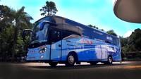Mengenal Berbagai Jenis Bus di Indonesia: dari HD, SHD, HDD, DD, hingga UHD