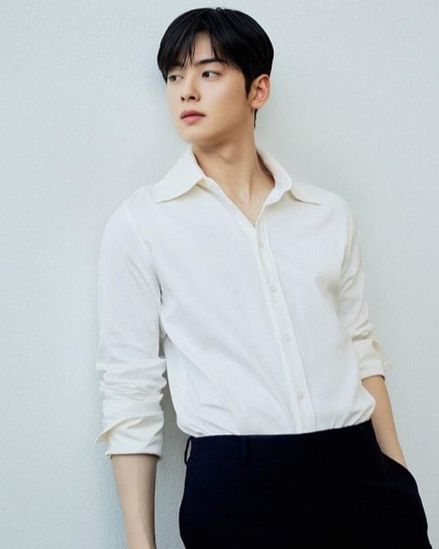 Cha Eunwoo/Sumber:instagram.com/eunwo.o_c