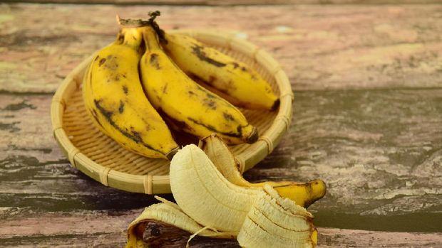 Fresh organic Latundan bananas (Tundan, Silk bananas, Pisang raja sereh, Manzana or Apple bananas)