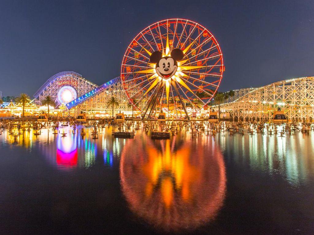 Cinta Bumi, Disney World Bangun Panel Tenaga Surya