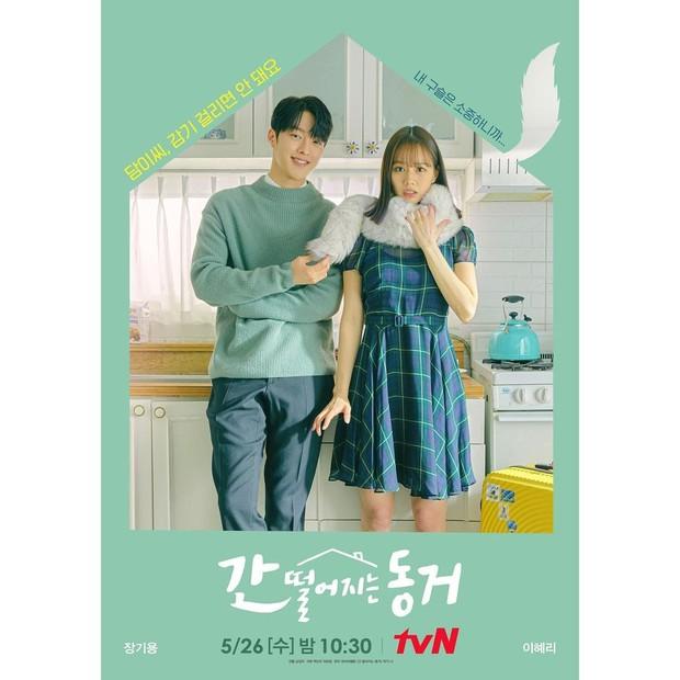Memiliki genre fantasi-romantis, drama ini menceritakan seorang profesor Shin Woo Yeo (Jang Ki Yong) yang juga sosok gumiho berusia 999 tahun.