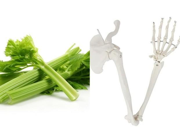 manfaat buah dan sayur untuk organ tubuh