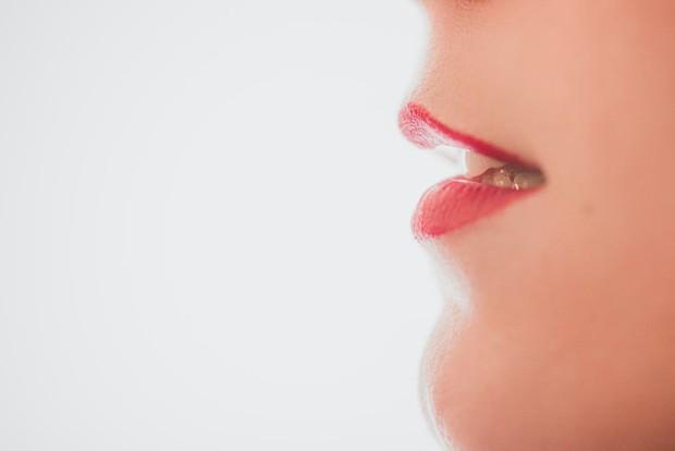 bibir