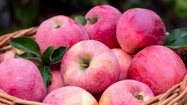 Cripps Pink apples and Pink Lady apples are the exact same apple with the same pink color and quality. The only difference is that Pink Lady® is a registered trademark of the Pink Lady Apple Association.  Pink Lady® was one of the first apples to be marketed under a specific brand name rather than by its variety name.