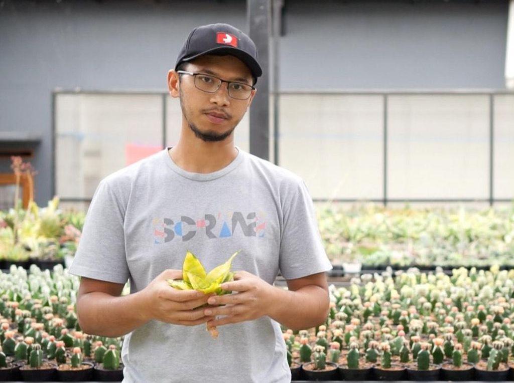 Tinggalkan Karir demi Kaktus, Pemuda Ini Raup Ratusan Juta/Bulan