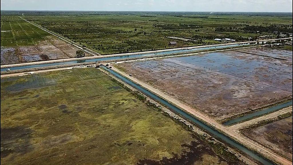 Kondisi Terkini Lumbung Pangan RI di Kalimantan Tengah