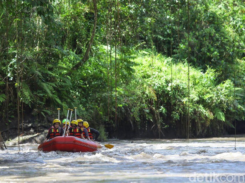 Rafting Sungai Ayung yang Kian Sepi, Keseruannya Hilang