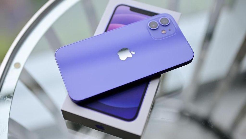 Wujud iPhone 12 Ungu yang Benar-benar Unyu