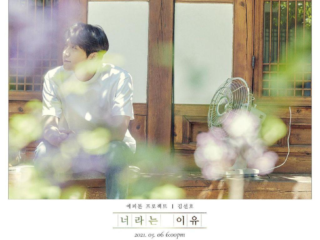 Hore! Kim Seon Ho Bakal Rilis Single Because Its You