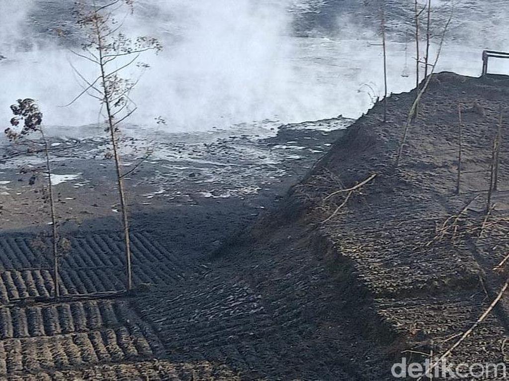 Kawah Sileri Dieng Erupsi, Warga dan Pengunjung Dilarang Mendekat