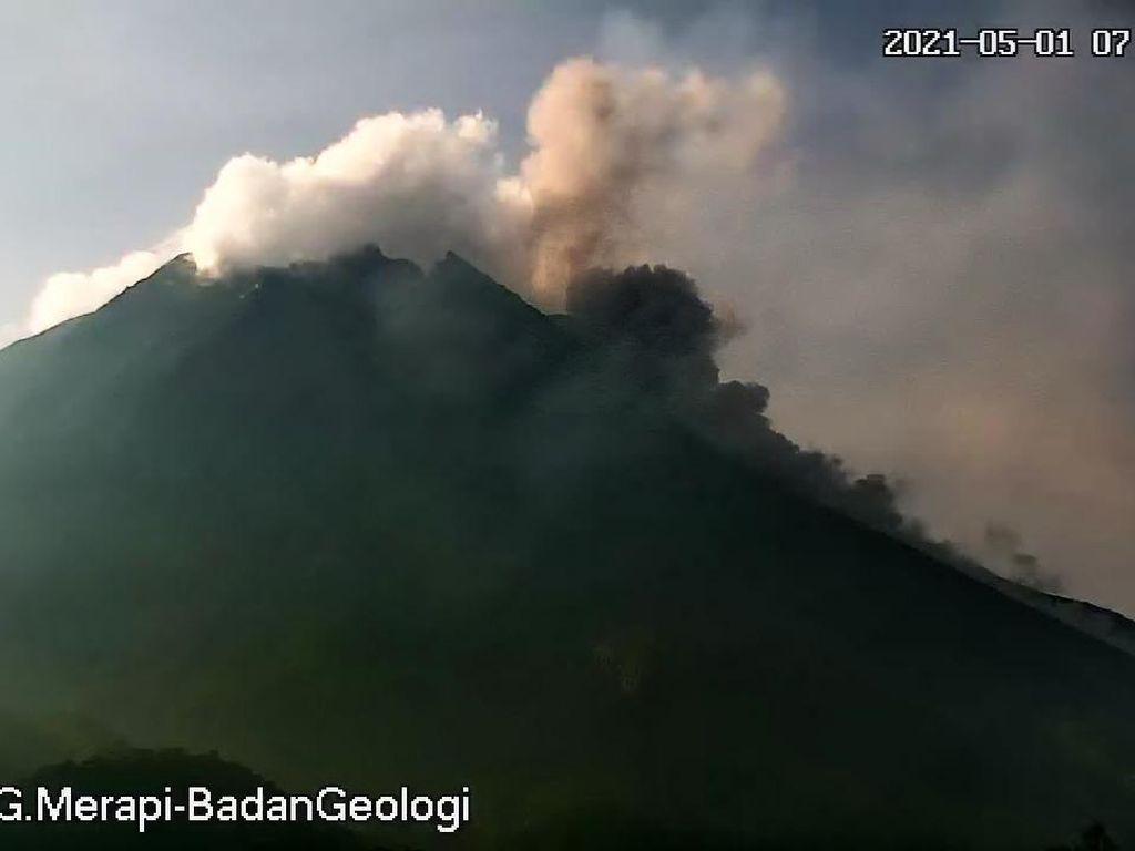 Gunung Merapi Erupsi 2 Kali, Muntahkan Awan Panas Sejauh 1,3 Km