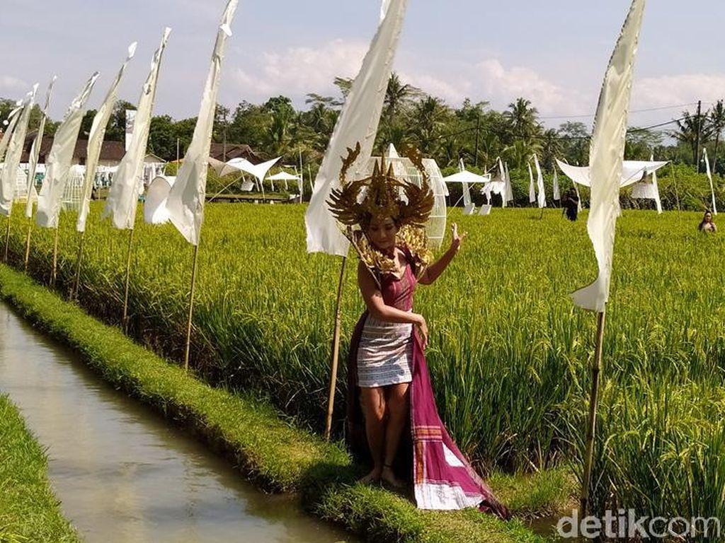 10 Foto Keindahan Fashion Show di Tengah Sawah Dekat Candi Borobudur