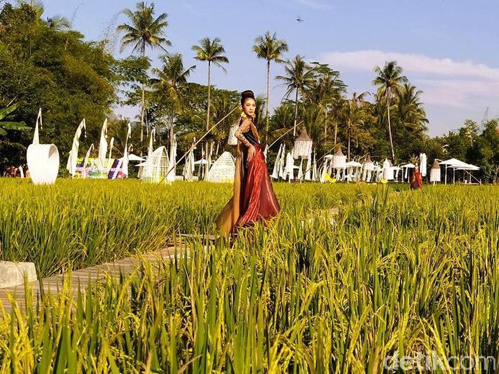 58 Desainer Gelar Fashion Show di Tengah Sawah Dekat Candi Borobudur