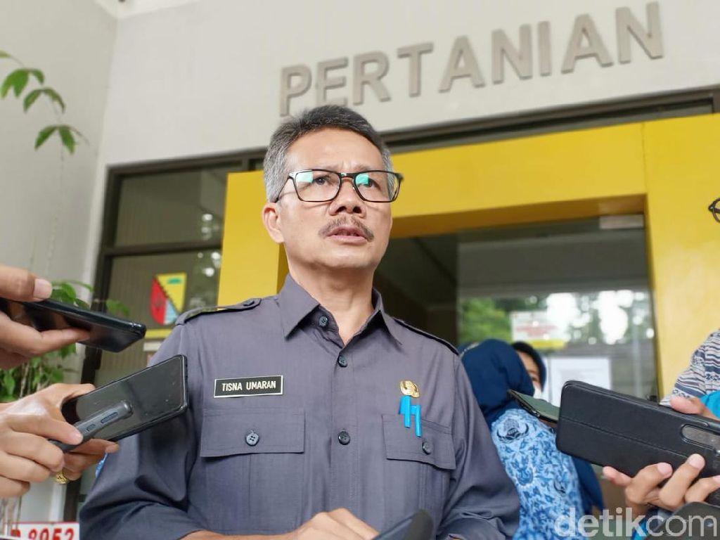 Jelang Lebaran, Distan Kabupaten Bandung Pastikan Stok Pangan Aman