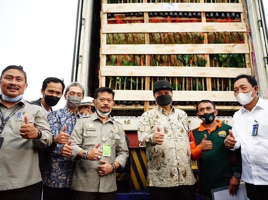 Airlangga-Mentan Lepas Ekspor Tanaman Hias dari Bogor Rp 70 M