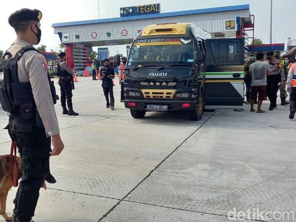 Angkut Pemudik dari Jakarta, 10 Travel Gelap Disetop di Tol Tegal
