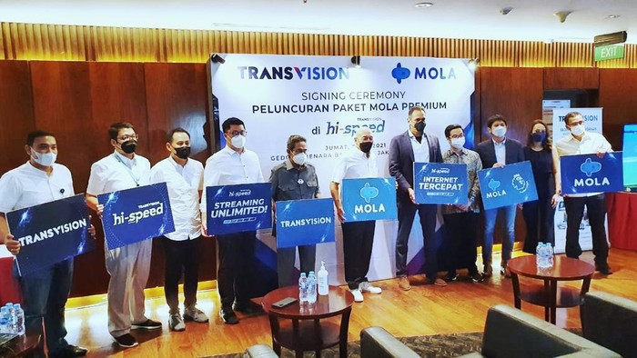 Transvision, Mola