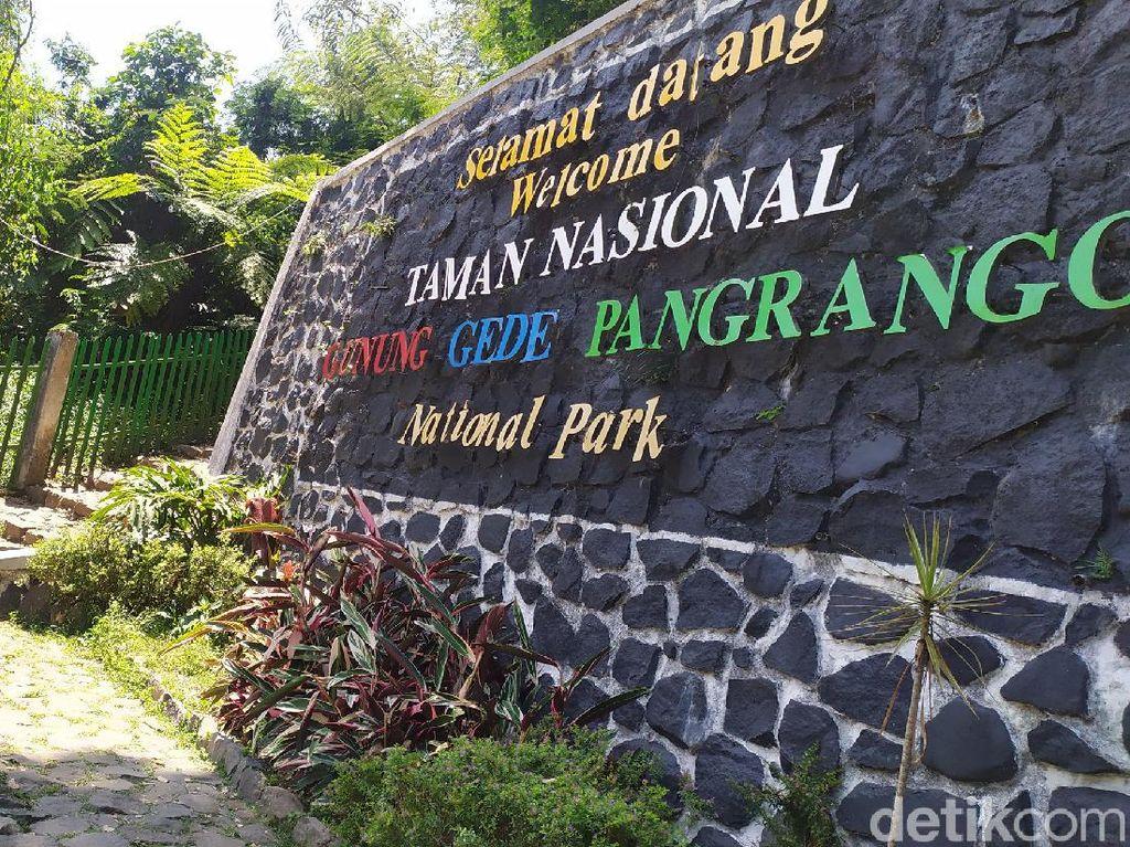 PPKM Darurat! Pendakian Gunung Gede Pangrango Ditutup
