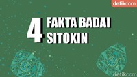 4 Fakta Badai Sitokin, Respons Imun yang Banyak Dialami Pasien COVID-19