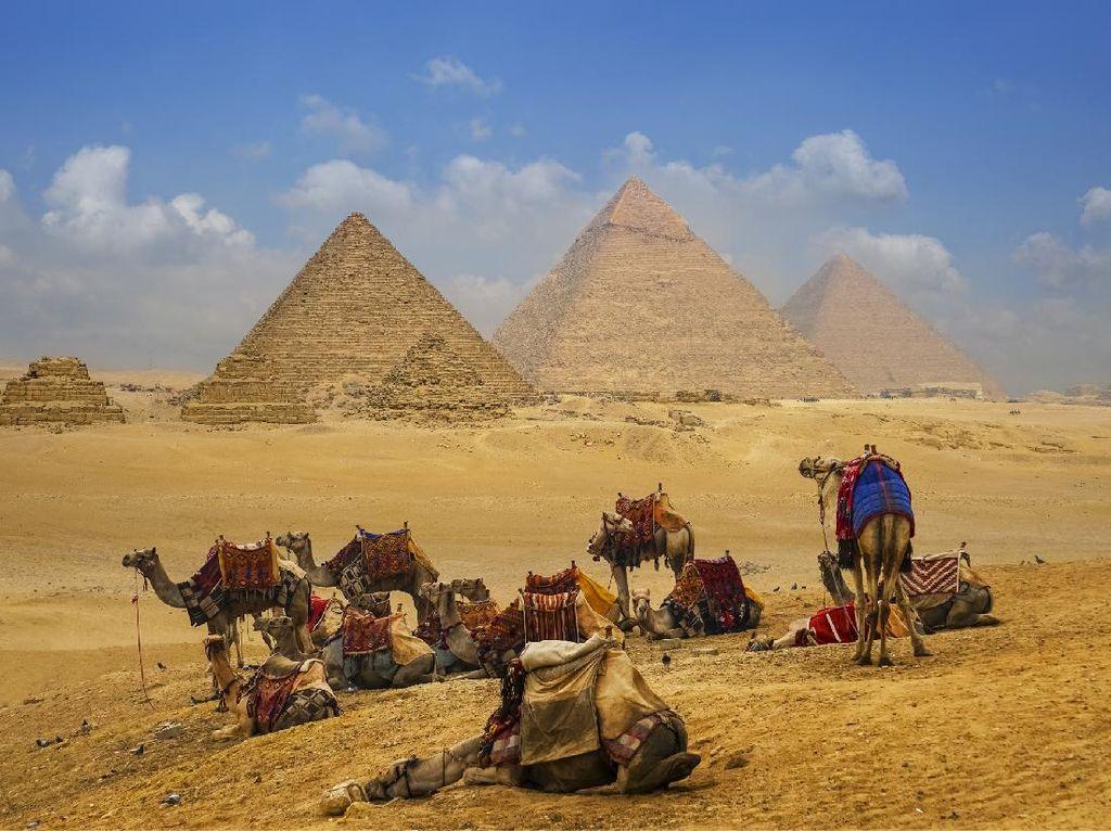 Wisata Mesir Pede Bergairah Lagi, Tawarkan Wisata Alam Bebas
