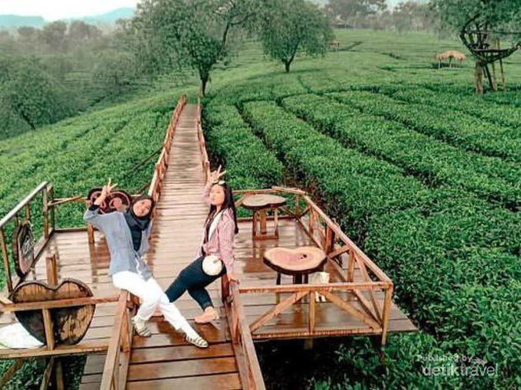 5 Destinasi yang Cantik di Malang Nih!