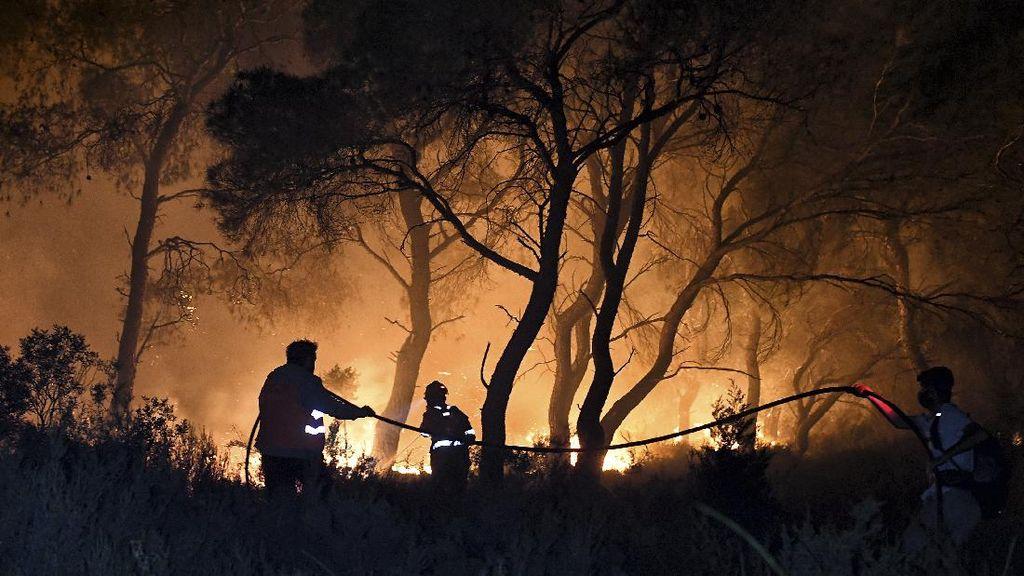 Kebakaran Hutan Yunani Merambat ke Rumah Warga