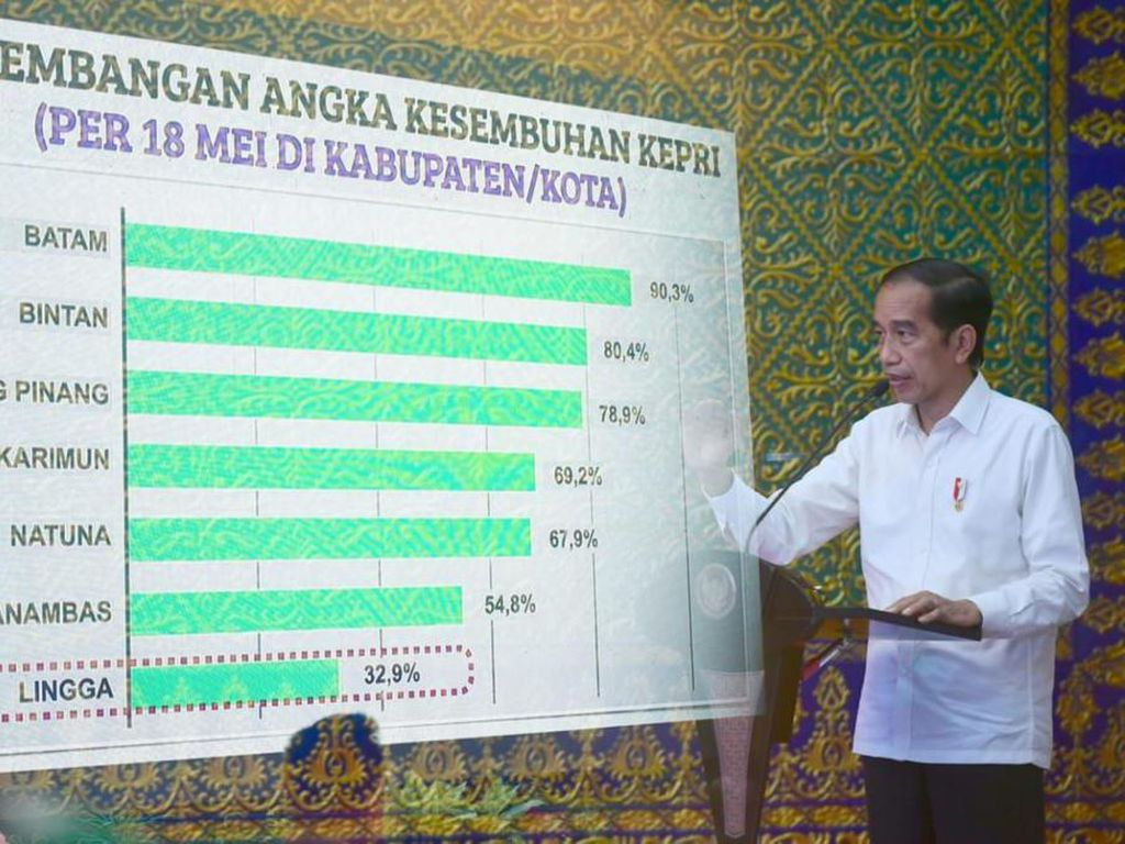 Beri Arahan di Kepri, Jokowi Beri Target 2 Minggu untuk Turunkan COVID-19