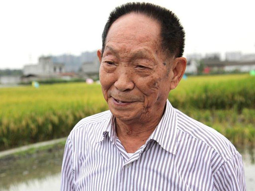 Yuan Longping, Bapak Padi Hibrida Dunia Tutup Usia