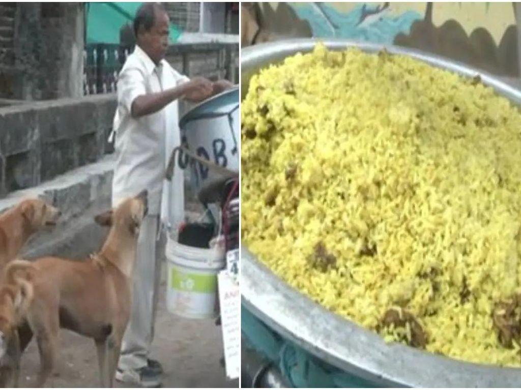 Mulia! Pria Ini Masak Nasi Biryani Ayam Untuk Beri Makan Kucing dan Anjing Liar