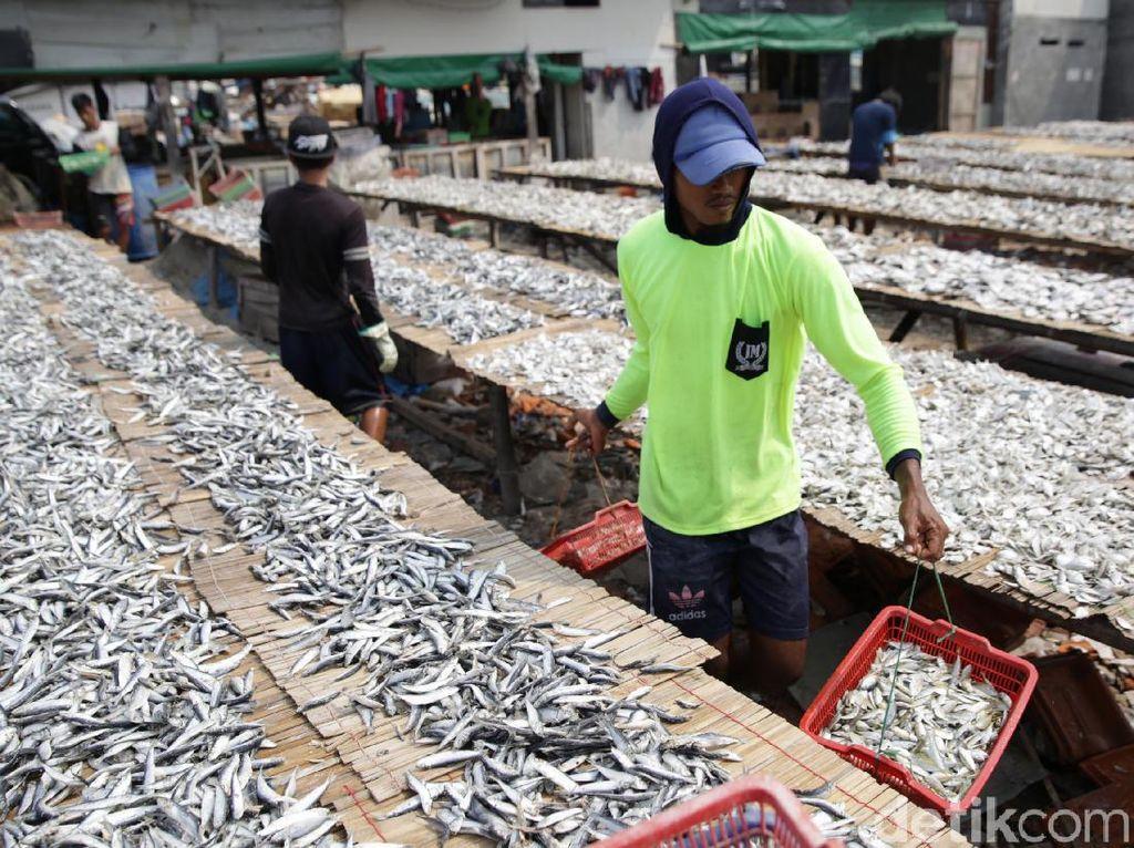 Meninjau Ulang Privatisasi Lumbung Ikan Nasional