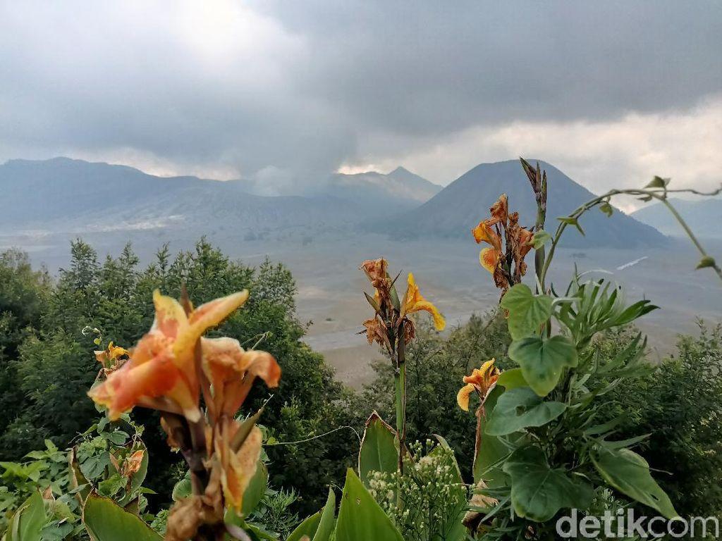 Dibuka Kembali, Wisata Gunung Bromo dan Semeru Dibatasi Kuota 50 Persen