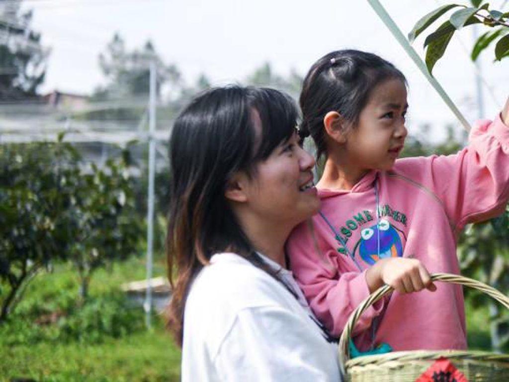 Tiba-tiba Wisata Pedesaan Jadi Primadona di China