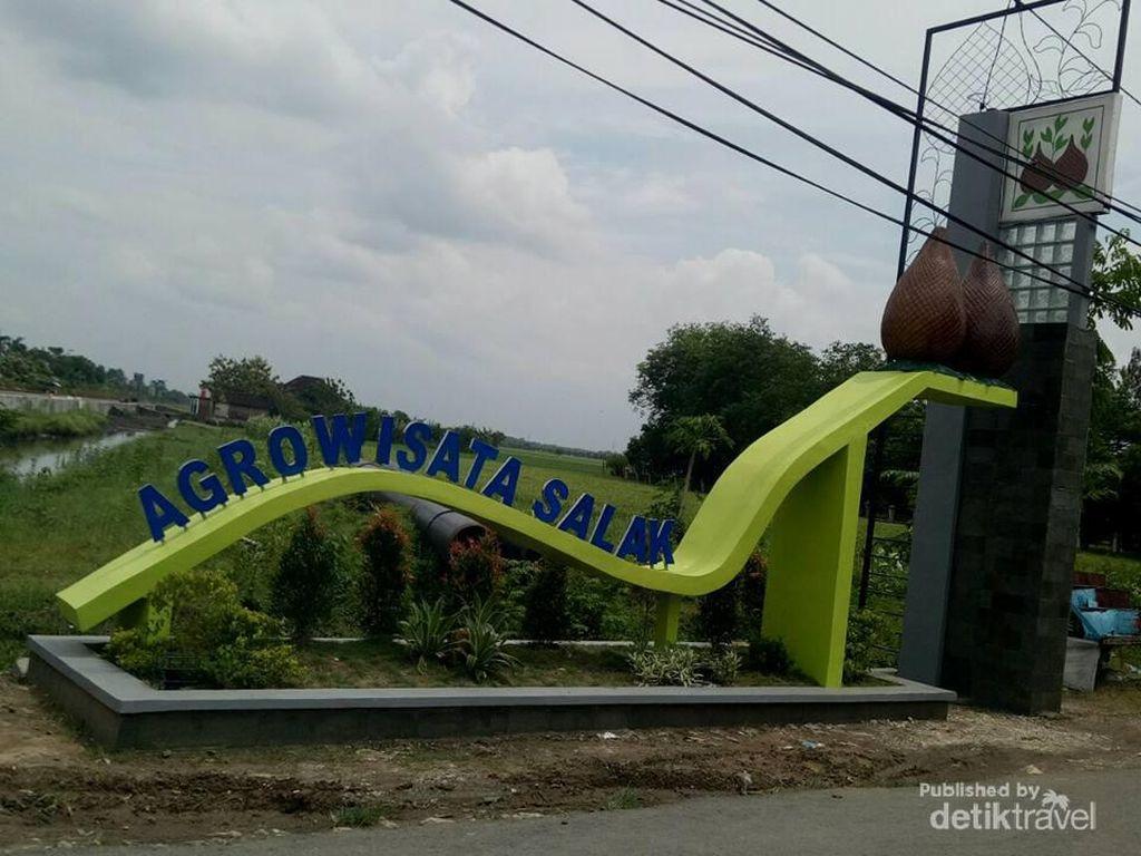 Jika ke Bojonegoro, Cobalah ke Kebun Salak di Taman Maha Dewi
