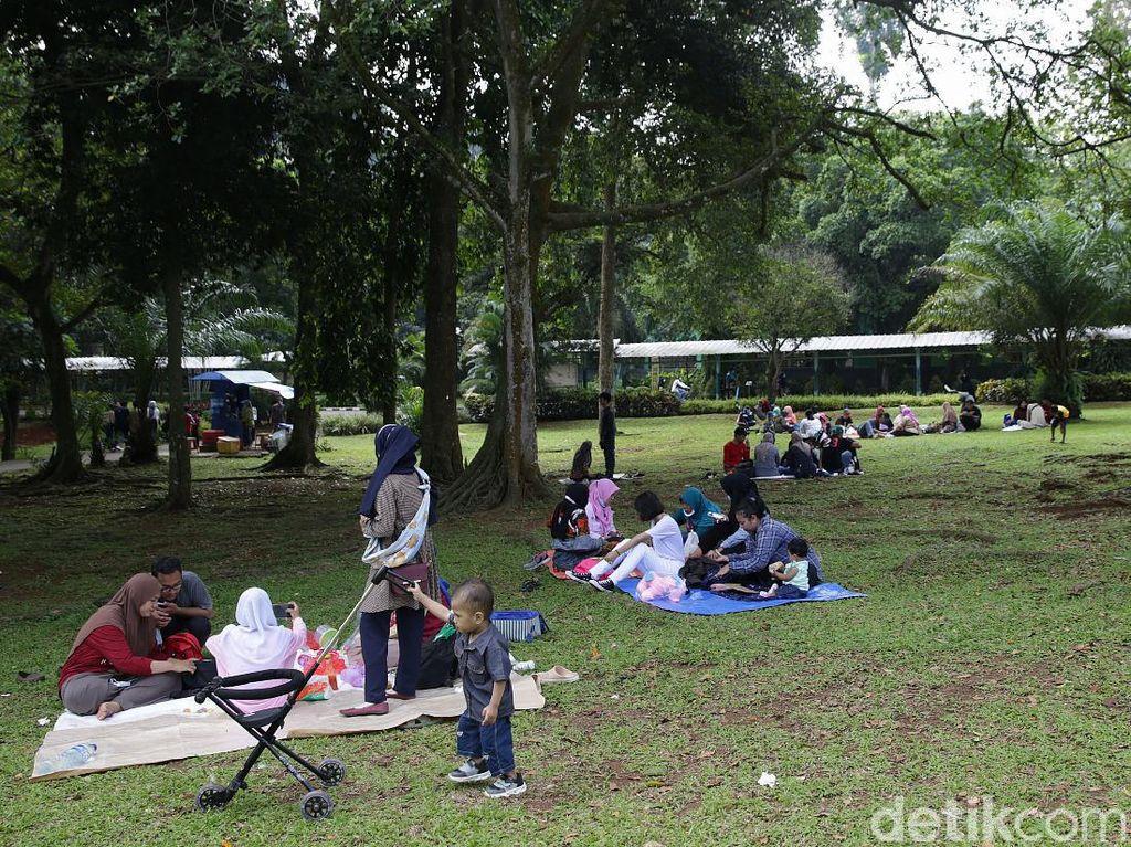Sudah Rindu ke Taman di DKI Jakarta? Ragunan Cs Buka Akhir Pekan Ini