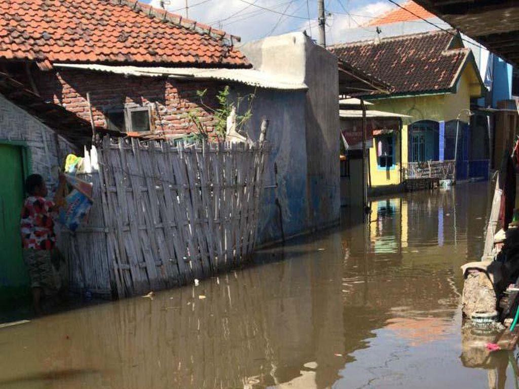 Rumah Warga di Pesisir Pantai Utara Probolinggo Diterjang Banjir Rob